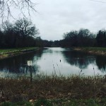 Wanstead Park on a Saturday afternoon